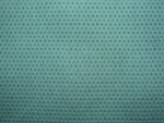 56109 Polyester Fabric